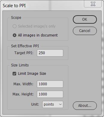 Scale to PPI screenshot